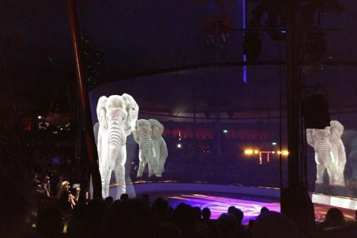 سیرکی با نمایش حیوانات مجازی