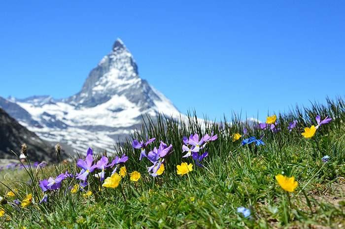 مکان های و طبیعت زیبای سوییس